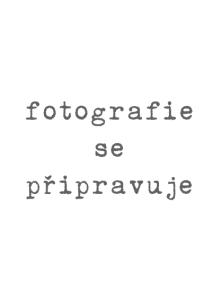 DocNoPhoto
